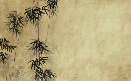 Bamboo paper texture